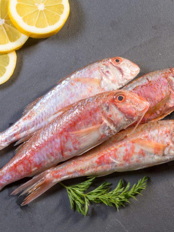 Saga Fish Restaurant